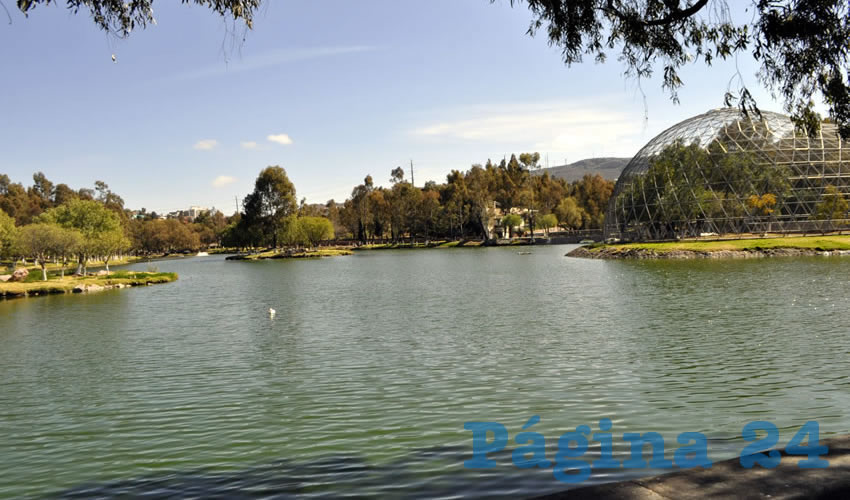 Parque la Encantada, Lugar Predilecto en Zacatecas