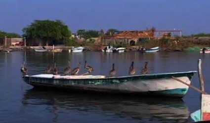 En el Puerto de San Blas