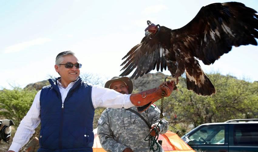 Regresan a su Hábitat a un Águila Restablecida en el Centro de Rehabilitación de Aves Rapaces