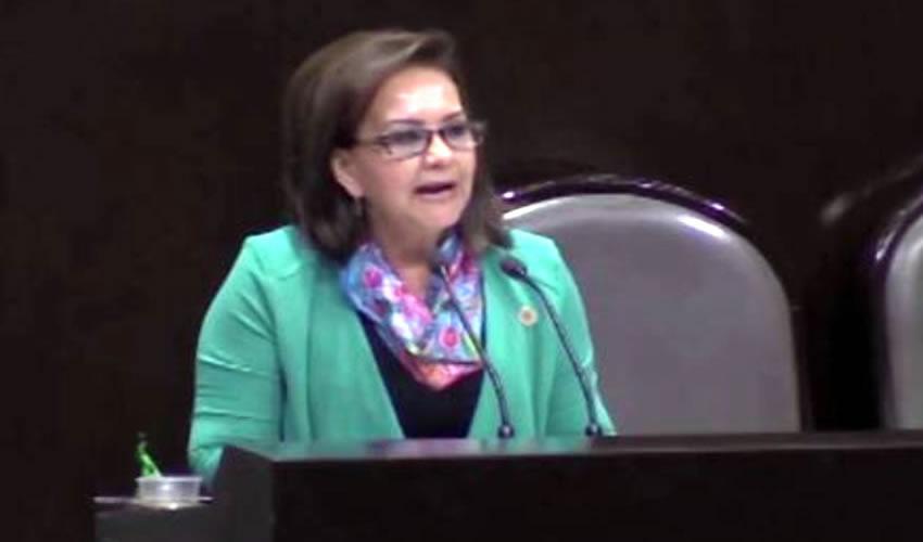 Diputada Federal Pretende Legislar Sobre Consumo de sal