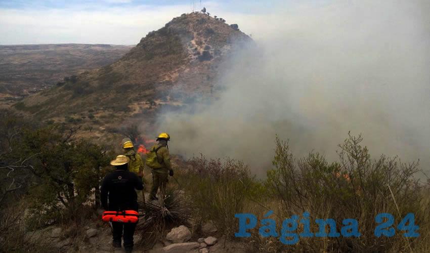 Voraz Incendio en el Cerro del Picacho