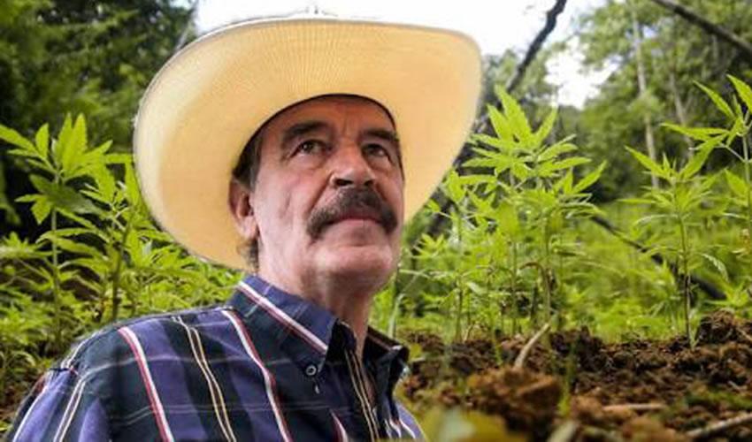Vicente Fox Quesada ...viejo mariguano, hundió al país...