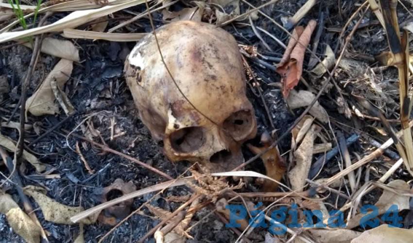 Habitante de La Zacatecana hizo el macabro descubrimiento (Foto: Ilustrativa)