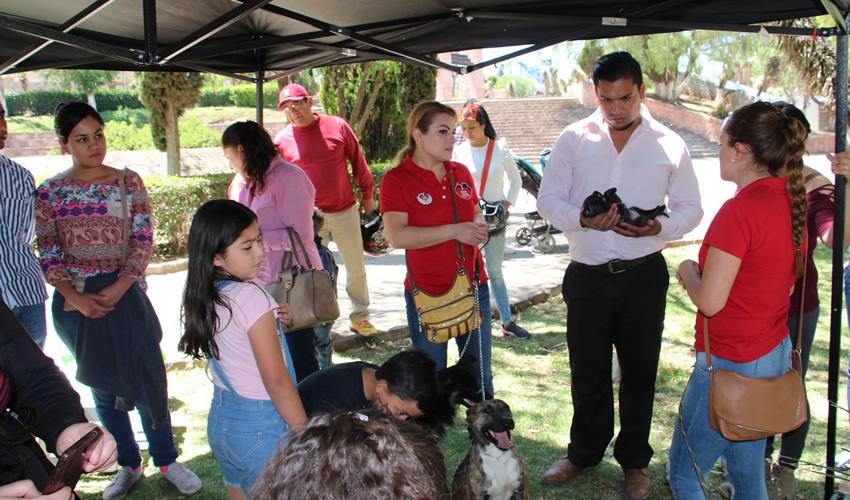 Esta actividad fue realizada por la asociación de rescate animal llamada Dog Love Zacatecas, quien convocó a los zacatecanos a asistir a las instalaciones del Parque Arroyo de la Plata (Foto Rocío Castro Alvarado)