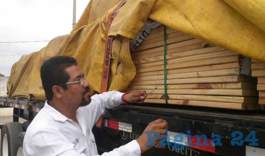 Durante la inspección, el personal de la Profepa detuvo el embarque de madera y realizó la colecta de muestras de insectos