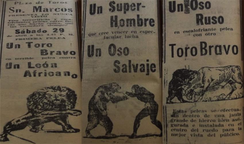 Función de peleas entre un toro y un león; un oso y un super-hombre; un oso y un toro (Fuente: El Sol del Centro, 27 de abril de 1950)