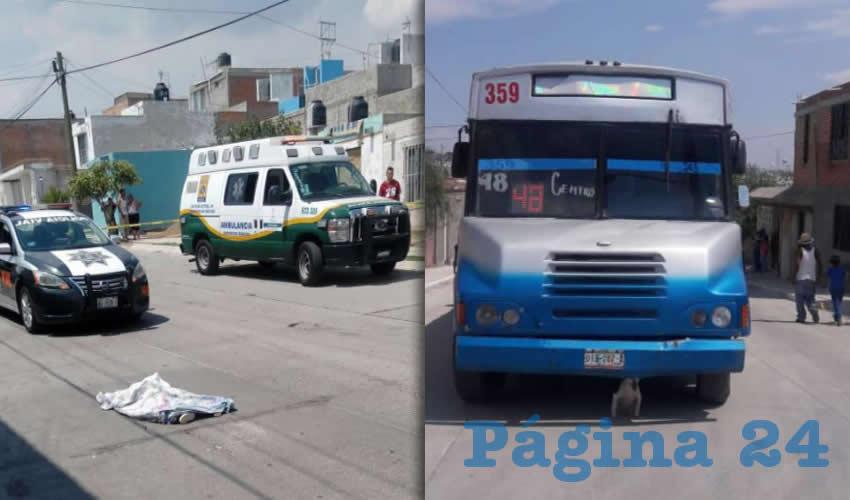 El pequeño de tres años de edad murió sobre la calle Circuito El Laurel Poniente | El chofer intentó escapar a bordo del camión, pero fue interceptado en Los Pericos