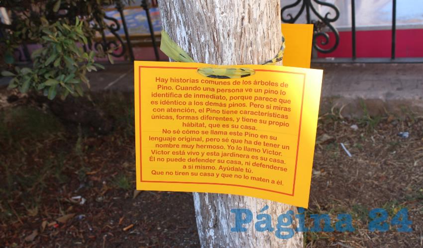 Este mensaje fue difundido por medio de redes sociales, por el grupo denominado Vecinos de Fernando Villalpando, haciendo alusión a que los pocos espacios verdes, pretenden ser acabados por el Ayuntamiento de Zacatecas al mando de Judit Guerrero López. (Foto: Merari Martínez Castro)
