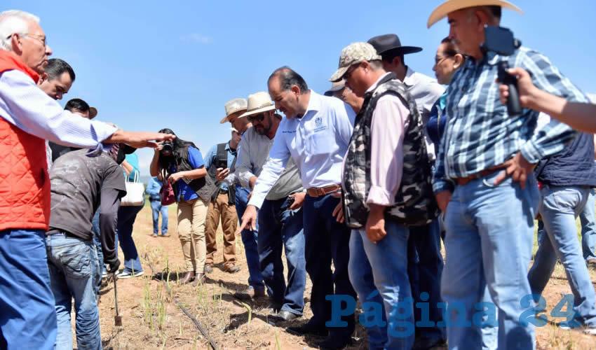 Fomenta MOS la Agricultura con Inversión de 35 mdp Para Reconversión Productiva