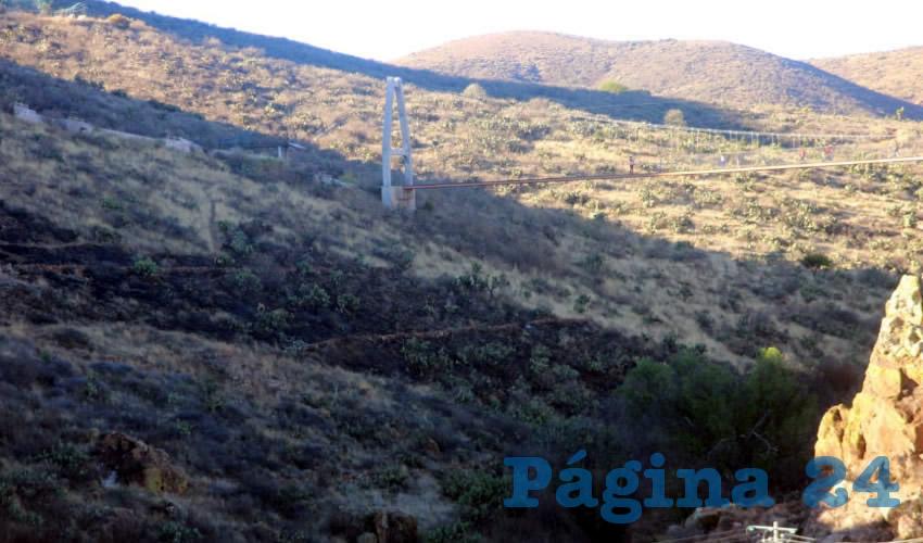Jóvenes de Zacatecas buscan reforestar el Eco Parque Centenario, después de que el pasado jueves 7 de marzo por la noche se incendiaran alrededor de 20 hectáreas debido a un incendio provocado y del que ya se busca a los culpables (Foto Rocío Castro Alvarado)