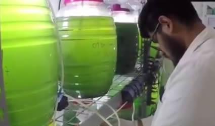 Invento de Mexicanos Para Abatir la Contaminación