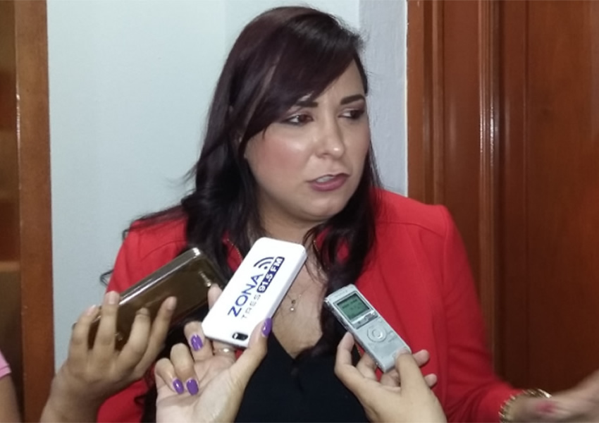 "Diputada pide tipificar el ""suicidio feminicida"""