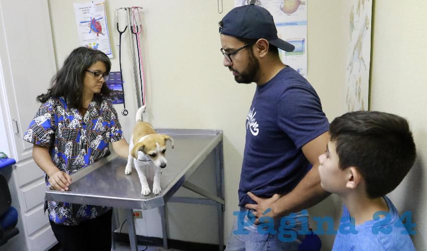La UAA Ofrece el Servicio de Esterilización Canina y Felina en su Hospital Veterinarioa