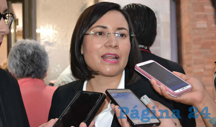 María de la Luz Domínguez Campos, titular de la Comisión de Derechos Humanos del Estado de Zacatecas (CDHEZ) (Foto Archivo Página 24)
