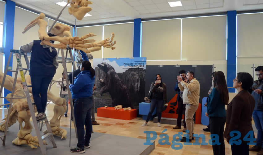La directora del Zig-Zag, María Luisa Valenzuela y el paleontólogo y asesor científico de la exposición, Rubén Guzmán, presentaron el montaje de la exhibición de la mega fauna que vivió en el territorio que hoy ocupa la República Mexicana durante la época del Pleistoceno en la edad de hielo.