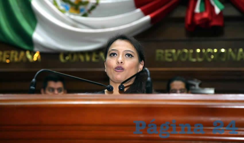 Érica Palomino Bernal