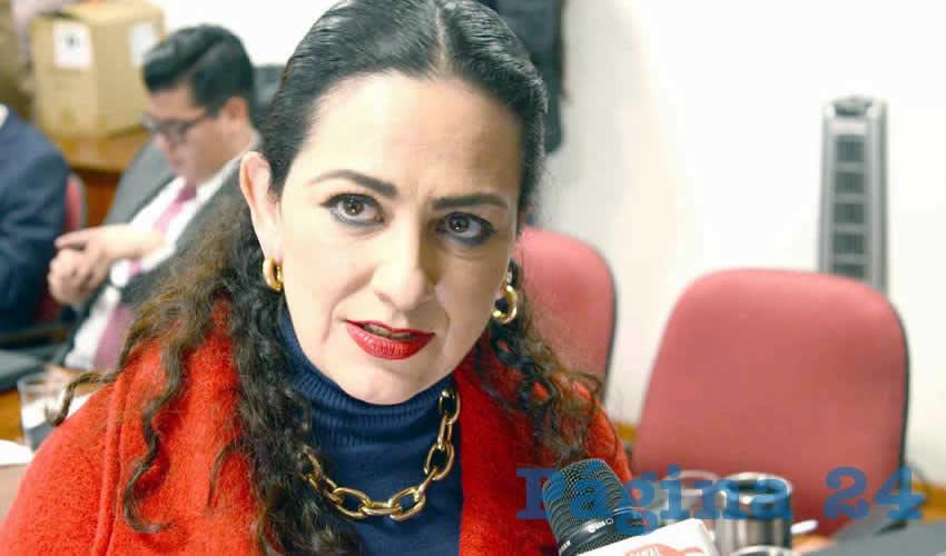 Lizbeth Márquez Álvarez, diputada migrante por el PRI (Foto: Archivo Página 24)