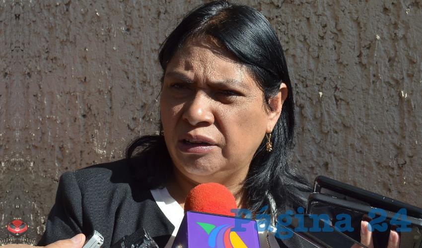 María Guadalupe López Marchant, titular de la Secretaría de Desarrollo Urbano, Vivienda y Ordenamiento Territorial (Seduvot) (Foto: Archivo Página 24)