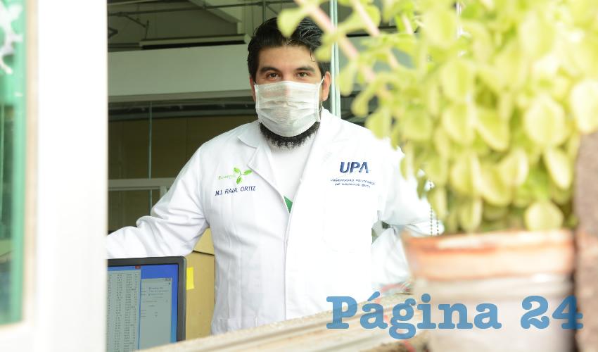 Los Investigadores de la UPA Generan  Energía a Través de Plantas Naturales