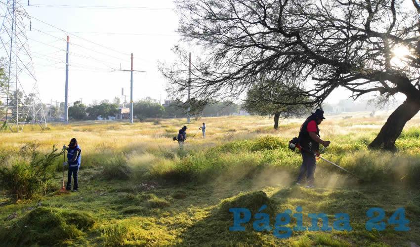 Se Realizó Mega Jornada de Rehabilitación de Espacios Públicos en el Infonavit Morelos